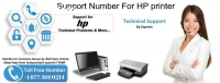 +1 877 301 0214 –Support Number For HP