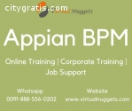 Appian BPM Online Training Institution