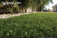 Artificial Grass Suppliers in Brisbane