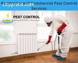 Best Local Pest Control Experts
