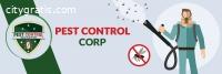 Top Pest Control Service Provider