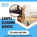 Carpet Cleaning company in Brisbane