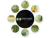 Carpet Cleaning Highbury
