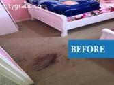@Carpet Cleaning service in Brisbane