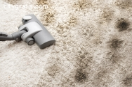 Carpet Cleaning Success