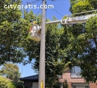 Commercial Tree Removal Perth