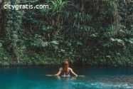 Daintree Tourism