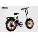 EARTH Electric Bikes