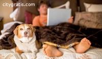 .. Fast Loans - Moneyspot
