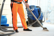 Get Same Day Carpet Cleaning Services