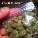 High Medical Marijuana, Rick Simpson Oil
