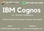 IBM Cognos Business Intelligence Online