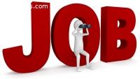 Job Consultancy in Udaipur