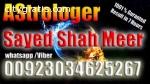 online astrologer sayed shah meer