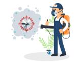 Pest Control Birchgrove
