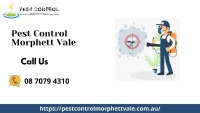 Pest Control Services in Morphett Vale