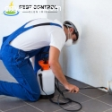 Pest Controllers Services in Glen Iris