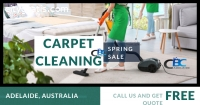 Professional Carpet Cleaners In One Call