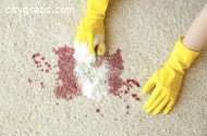 Professional Carpet Stain Removal Perth