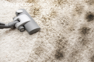Professional Dust Mite Cleaning Services