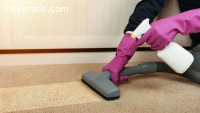 Professional residential carpet cleaning