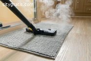 Reliable Carpet Mould Removal Hobart