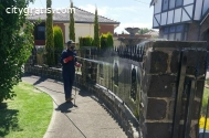 Residential Pest Control in Melbourne