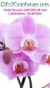 Send Online Valentine Gifts for Love Par
