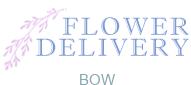 Flower Delivery Bow
