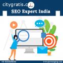 Hire SEO Expert in India - Jeewan Garg