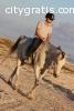 Horse riding in Salalah, Oman