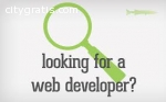 Professional website development &