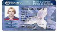 Buy Real Canadian Driver's Licence