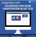 Facebook Fan Page Verification service