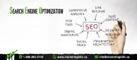 Get Professional Seo Services With Us