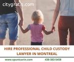 Hire Professional Child Custody Lawyer i