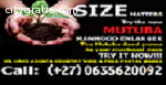 I SELL MUTUBA SEED FOR PENIS ENLARGEMENT