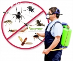 Live life Pest free in Vancouver