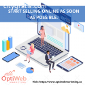 Optiweb Marketing- Working with experts