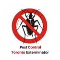 -  Pest Control Toronto Exterminator