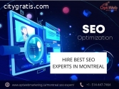 Professional SEO EXperts in Montreal