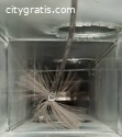 Searching for Duct Cleaning Services in
