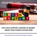 Top Child Support Lawyers in Quebec