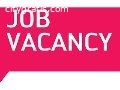 Wanted Data Entry Operator For Outsourci