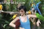 Auction : Parrots, Cages & More For Sale