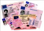 Passports,Driver`s Licenses,ID cards,PIO