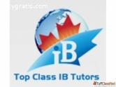 Best Tutor for Ib Economics IA Tutor
