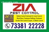 Blr Pest Control service | Anti Termite