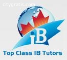 Excellent Ib Economics IA Help Tutor