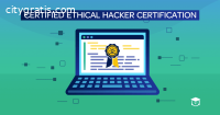 Top Cyber Security Training Institute in